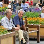 Pilihan Bisnis yang Cocok untuk Pensiunan Dijamin Berhasil